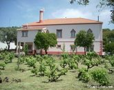 B&B/apartment for 4 guests in country house w/vineyard, Serra de São Mamede Park